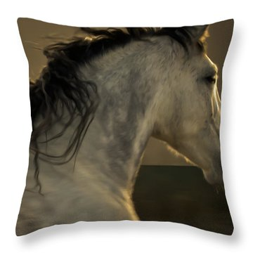 Americano 4 Throw Pillow
