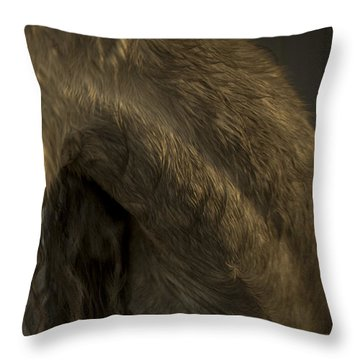 Americano 5 Throw Pillow