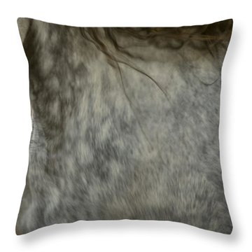 Americano 6 Throw Pillow