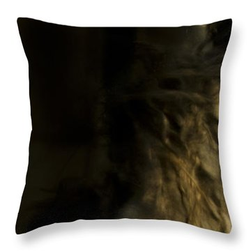 Americano 7 Throw Pillow