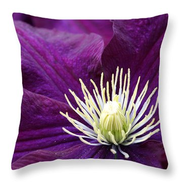 Amethyst Colored Clematis Throw Pillow