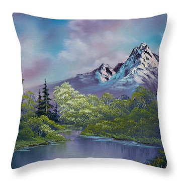 Amethyst Evening Throw Pillow by C Steele