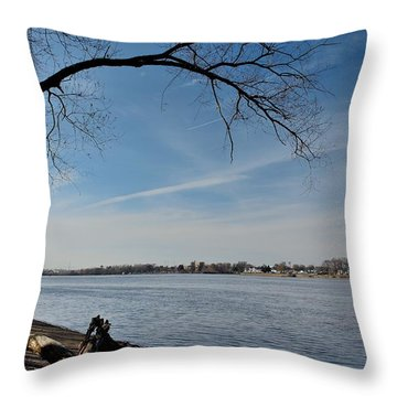 Throw Pillow featuring the photograph Amico Island Park by Steven Richman