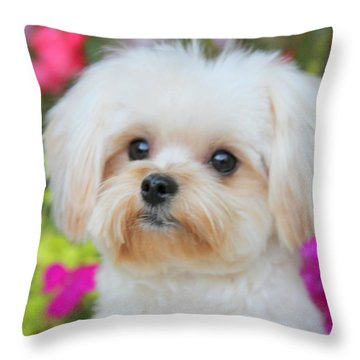 Amidst Throw Pillow