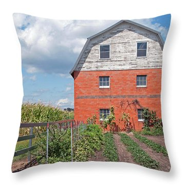 Amish Barn And Garden Throw Pillow by David Arment