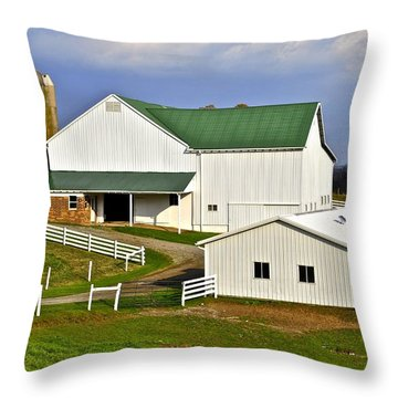 Amish Country Barn Throw Pillow by Frozen in Time Fine Art Photography