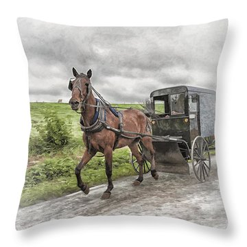 Throw Pillow featuring the photograph Amish Country by Linda Blair