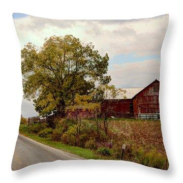 Amish Farm II Throw Pillow