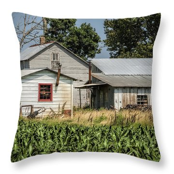 Amish Farm In Tennessee Throw Pillow by Kathy Clark