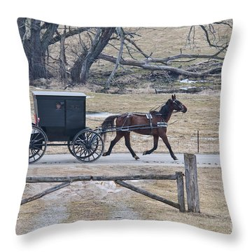 Amish Horse And Buggy March 2013 Throw Pillow