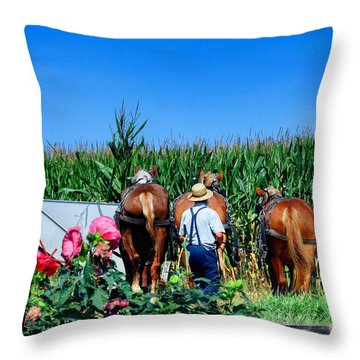 Amish Plowing Throw Pillow