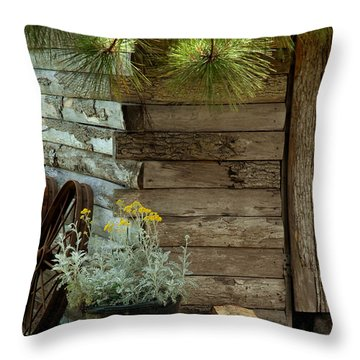 Amish Wood Shed Throw Pillow by Lena Wilhite