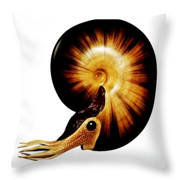 Ammonite Throw Pillow by Chase Studio