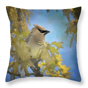 Among The Catkins Throw Pillow