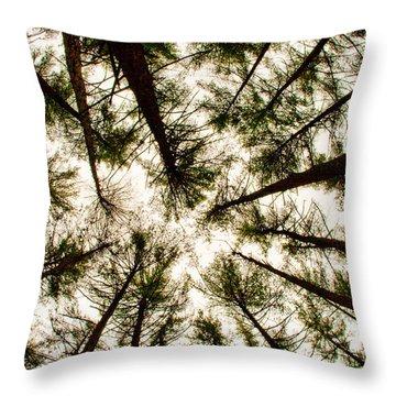 Among The Trees Throw Pillow