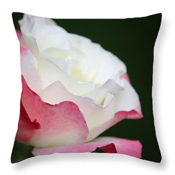 Throw Pillow featuring the photograph Amor by The Art Of Marilyn Ridoutt-Greene