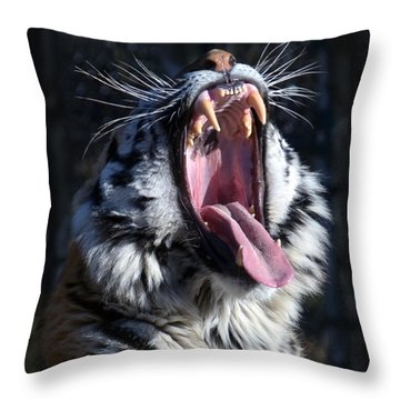 Amor Tiger Throw Pillow