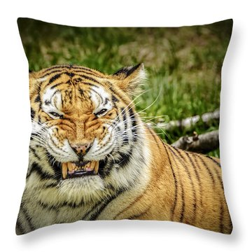 Amur Tiger Smile Throw Pillow by LeeAnn McLaneGoetz McLaneGoetzStudioLLCcom