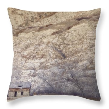 An Abandoned Farmhouse At The Base Throw Pillow by Roberta Murray