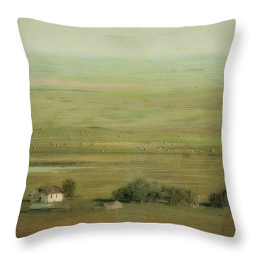 An Abandoned Farmhouse Throw Pillow by Roberta Murray