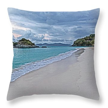 An Abandoned Trunk Bay Throw Pillow