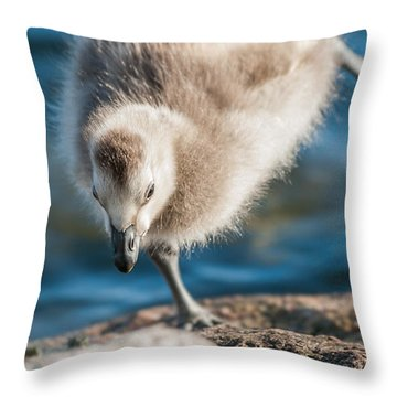 An Acrobatic Goose Throw Pillow by Janne Mankinen