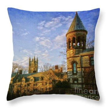 An Afternoon At Princeton Throw Pillow