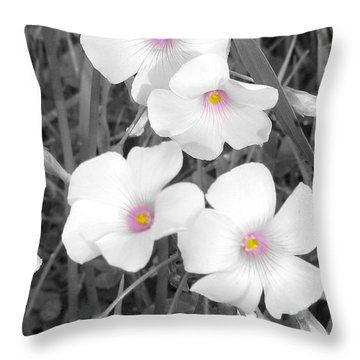 Throw Pillow featuring the photograph An Angels Work by Janice Westerberg