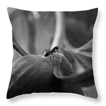 An Ant's Life Throw Pillow