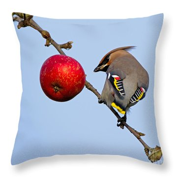 An Apple A Day... Throw Pillow by Torbjorn Swenelius