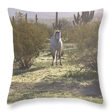 Throw Pillow featuring the photograph An Arizona Morning by Ruth Jolly