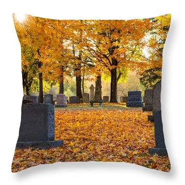 Forest Hill Autumn Light  Throw Pillow by Mary Amerman