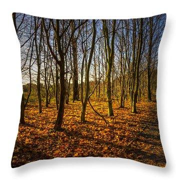 An Autumn Walk Throw Pillow