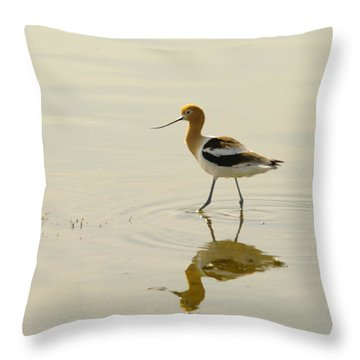 An Avocet Walking The Shore Throw Pillow by Jeff Swan