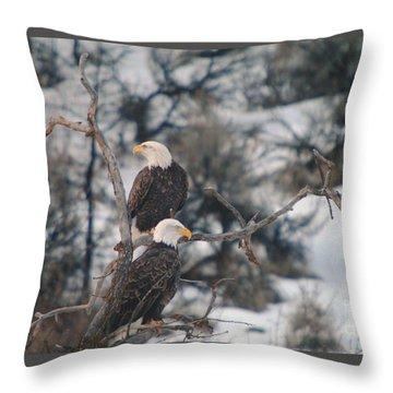 An Eagle Pair  Throw Pillow
