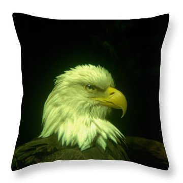 An Eagle Portrait Throw Pillow by Jeff Swan