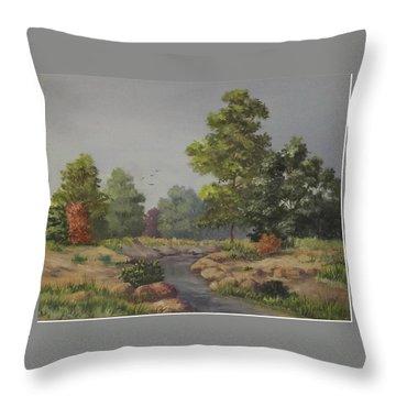 An East Texas Creek Throw Pillow by Wanda Dansereau