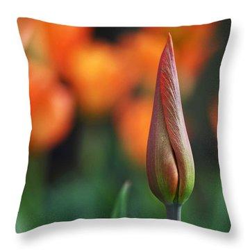 An Elegant Beginning Throw Pillow by Rona Black