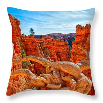 An Object For Imagination Throw Pillow