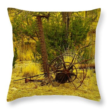 An Old Grass Cutter In Lincoln City New Mexico Throw Pillow by Jeff Swan