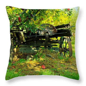 An Old Harvest Wagon Throw Pillow by Jeff Swan
