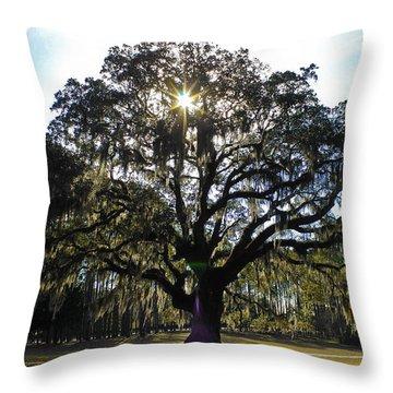 An Old Oak Tree Throw Pillow