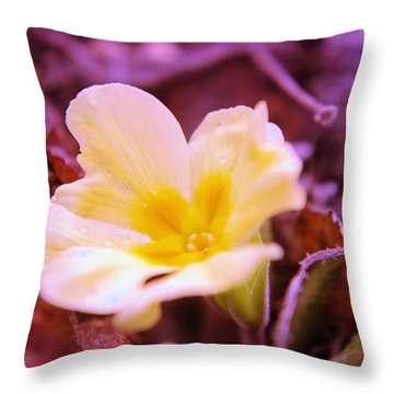 An Open Bud Throw Pillow by Jeff Swan