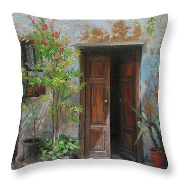 Rustic Doors Throw Pillows