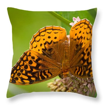 Great Spangled Fritillary Throw Pillow by Rima Biswas