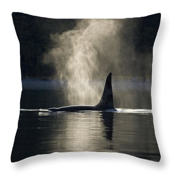 An Orca Whale Exhales Blows Throw Pillow by John Hyde