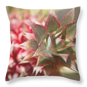 Ananas Comosus - Pink Ornamental Pineapple Throw Pillow by Sharon Mau
