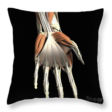 Anatomy Of The Hand Left Throw Pillow