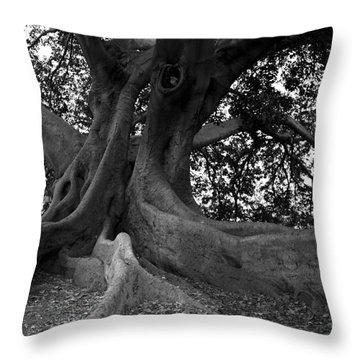 Ancestor Throw Pillow by Amanda Barcon
