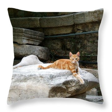 Ancient Agora Kitty Throw Pillow